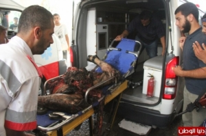 Izl War Crimes 4