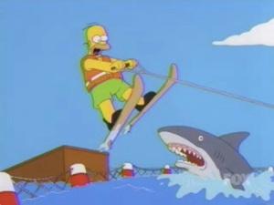 homer-jump-shark