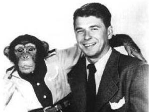 Reagan - Bonzo